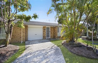 Picture of 3/19 Michigan Drive (Maple Court), Oxenford QLD 4210