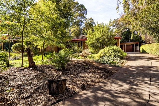 Picture of 7 Linfield Avenue, BELAIR SA 5052