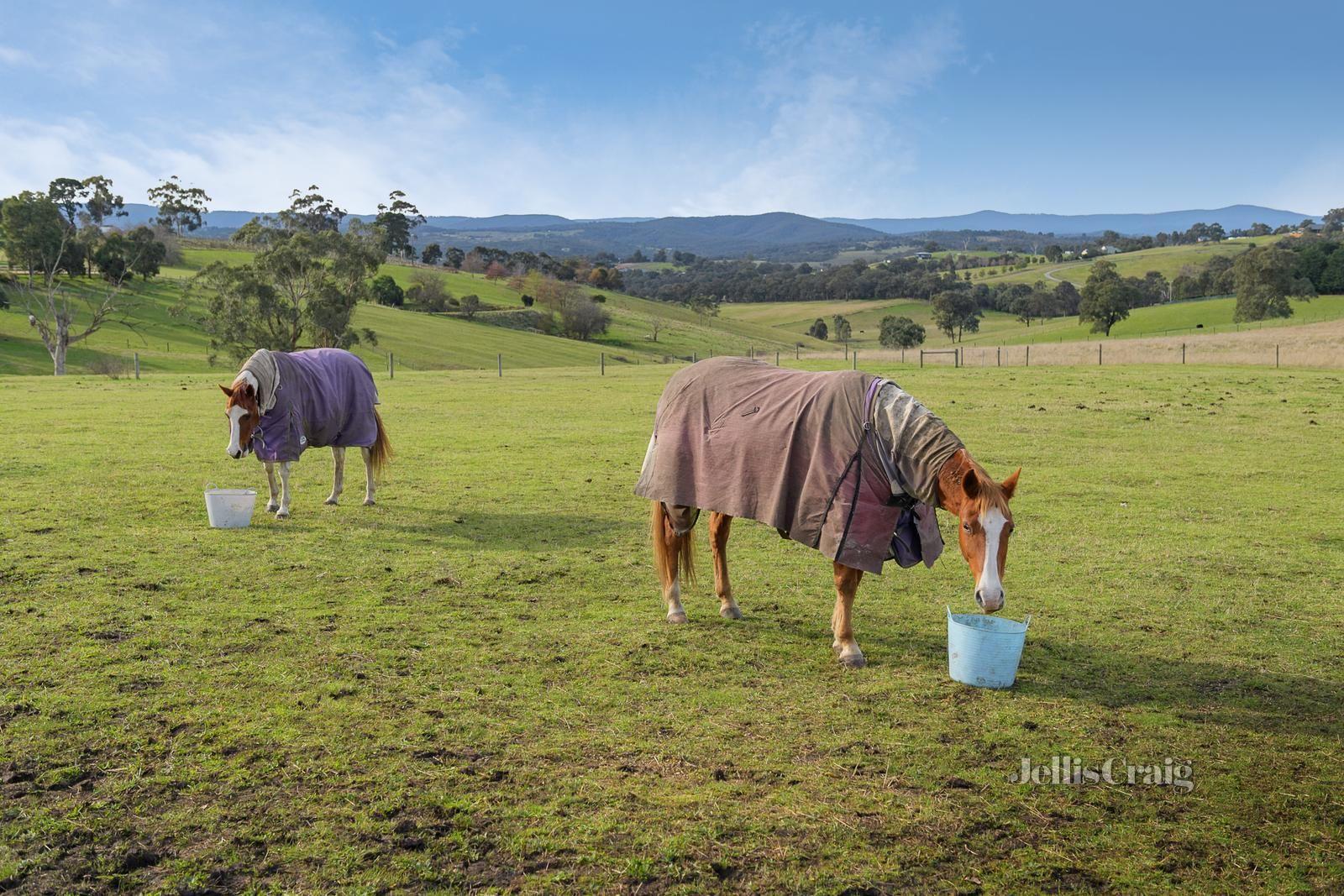 460 ElthamYarra Glen Road, Kangaroo Ground VIC 3097, Image 2