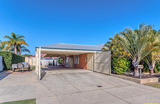 Picture of 156 Harpenden Street, Huntingdale WA 6110
