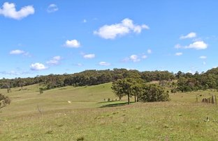 557 The Lookdown Rd, Bungonia NSW 2580