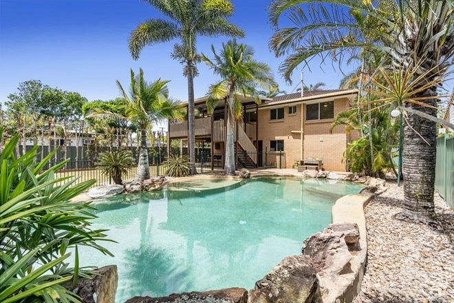 Picture of 12 Collingwood Road, BIRKDALE QLD 4159