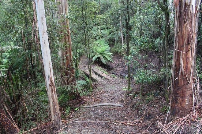 Picture of 574 Apollo Bay-Forrest Road, BARRAMUNGA VIC 3249