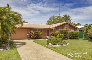 Picture of 20 Satinay Street, Mountain Creek QLD 4557