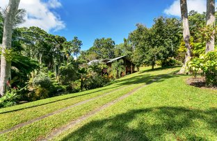 Picture of 263 Oak Forest Road, Kuranda QLD 4881