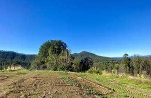 Picture of 2148 Comboyne Road, Killabakh NSW 2429