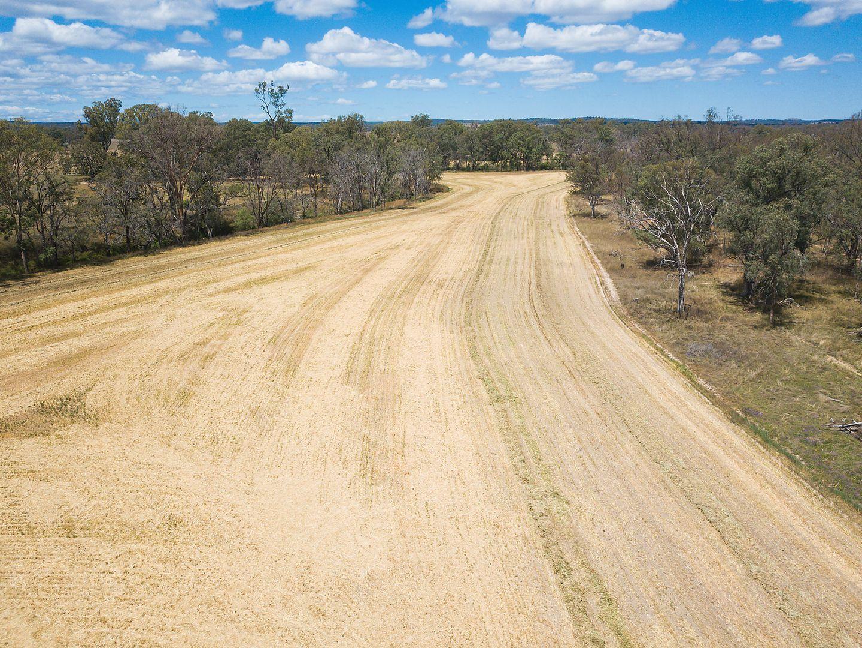 7883 Toowoomba-Karara Road, Karara QLD 4352, Image 1