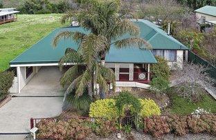 Picture of 18 Vine Street, Dorrigo NSW 2453
