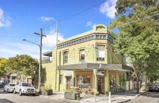 74 Palace Street, Petersham NSW 2049