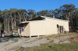106 Warra Forest Road, Glencoe NSW 2365