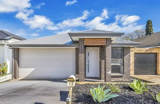 Picture of 13 Montrose Avenue, Clearview SA 5085