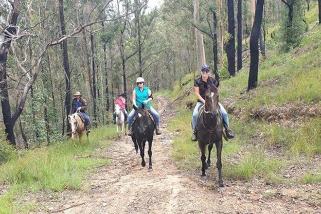 Picture of 436 Maras Creek Road, UTUNGUN NSW 2447