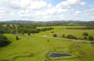 Picture of Belli Park QLD 4562