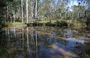 Wattle Camp QLD 4615