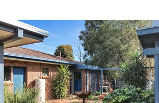 Picture of 3 Robin Crescent, Coleambally NSW 2707