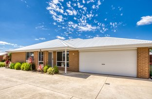 Picture of 16 Pech Avenue, Jindera NSW 2642