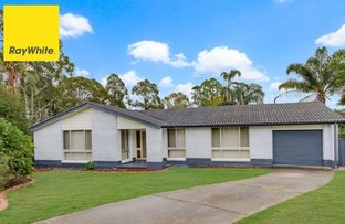Picture of 51 Randall Avenue, Minto NSW 2566