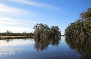 Picture of ELDERS DENILIQUIN WATER AUCTION, Deniliquin NSW 2710