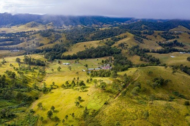 Picture of 1507 Bakers Creek Road, BAKERS CREEK NSW 2422