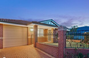 Picture of 1/239 St Brigids  Terrace, Doubleview WA 6018