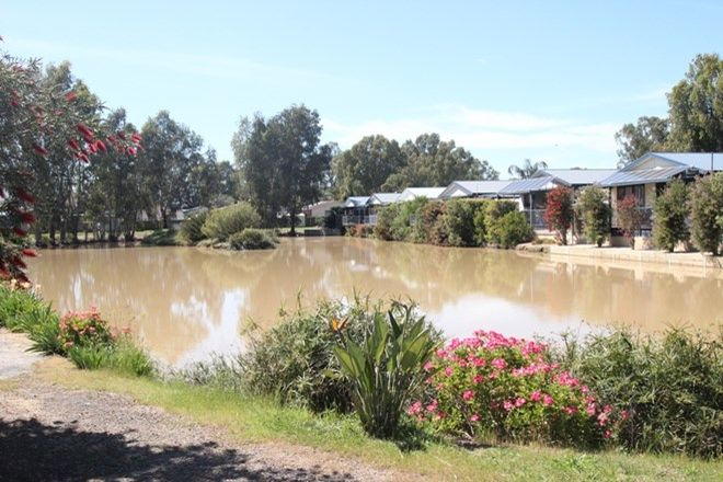 Picture of 15 Bellview Street, COBRAM VIC 3644