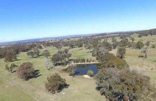 288 Sylvia Vale Road, Binda NSW 2583