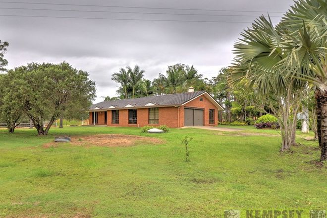 Picture of 453 Collombatti Rd, COLLOMBATTI NSW 2440