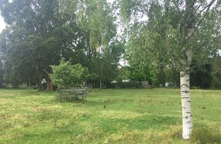 Picture of 171 Timboon Port Campbell Rd, Timboon VIC 3268