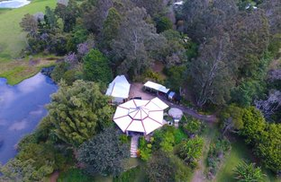 Picture of 12 Lawrence Place, Maleny QLD 4552