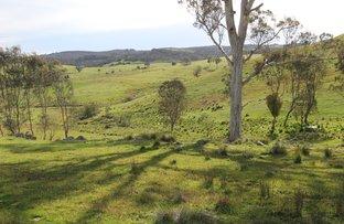 Picture of 468 Pudman Creek Rd., Blakney Creek NSW 2581