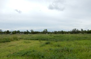 Picture of Lot 98 Daveys Road, Baralaba QLD 4702