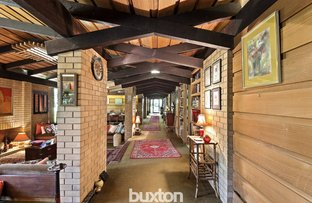 Picture of 34 Were Street, Brighton VIC 3186