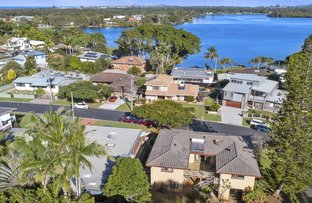 Picture of 17 Bimbadeen Ave, Banora Point NSW 2486