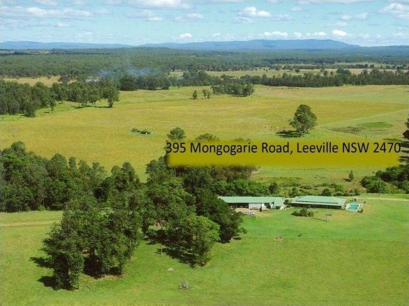 395 Mongogarie Road, Leeville NSW 2470, Image 1