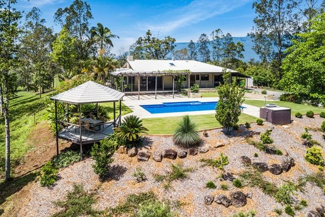 Picture of 149 HOGGS ROAD, TYALGUM CREEK NSW 2484