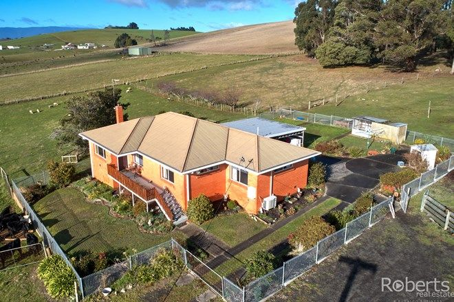 Picture of 139 Muskfield Road, JETSONVILLE TAS 7260
