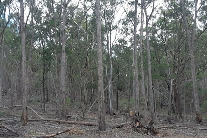 Picture of Lot 12 Timberlight Road, WINDELLAMA NSW 2580