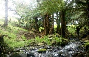 Picture of 40 Quinns Road, Mengha TAS 7330