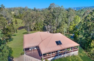 Picture of 792 Maleny Kenilworth Road, Elaman Creek QLD 4552