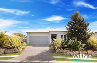 8 Romulus Circuit, Augustine Heights QLD 4300