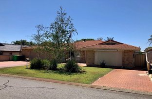 Picture of 10 Silvergull Terrace, Australind WA 6233