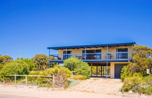 Picture of 2 Gull Street, Marion Bay SA 5575