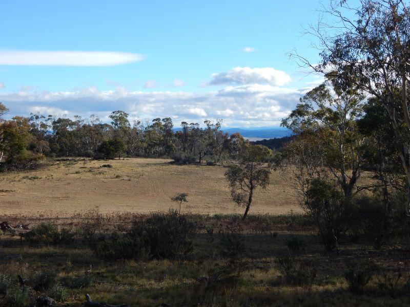 Lot 106 & 116 Collins Road, Numeralla NSW 2630, Image 0