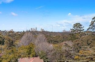 1030/2-12 Avon Road, Pymble NSW 2073