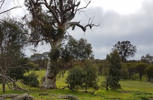 Picture of Lot 126 Hoggarth Road, Clackline WA 6564