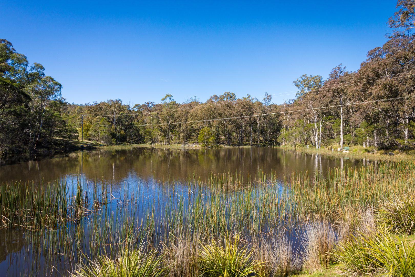 824 Burragate Rd, Wyndham NSW 2550, Image 2
