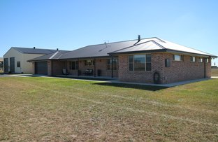 Picture of 48 Galloway Place, Glen Innes NSW 2370