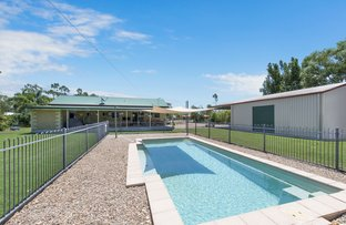 Picture of 10 Vanessa Court, Alice River QLD 4817