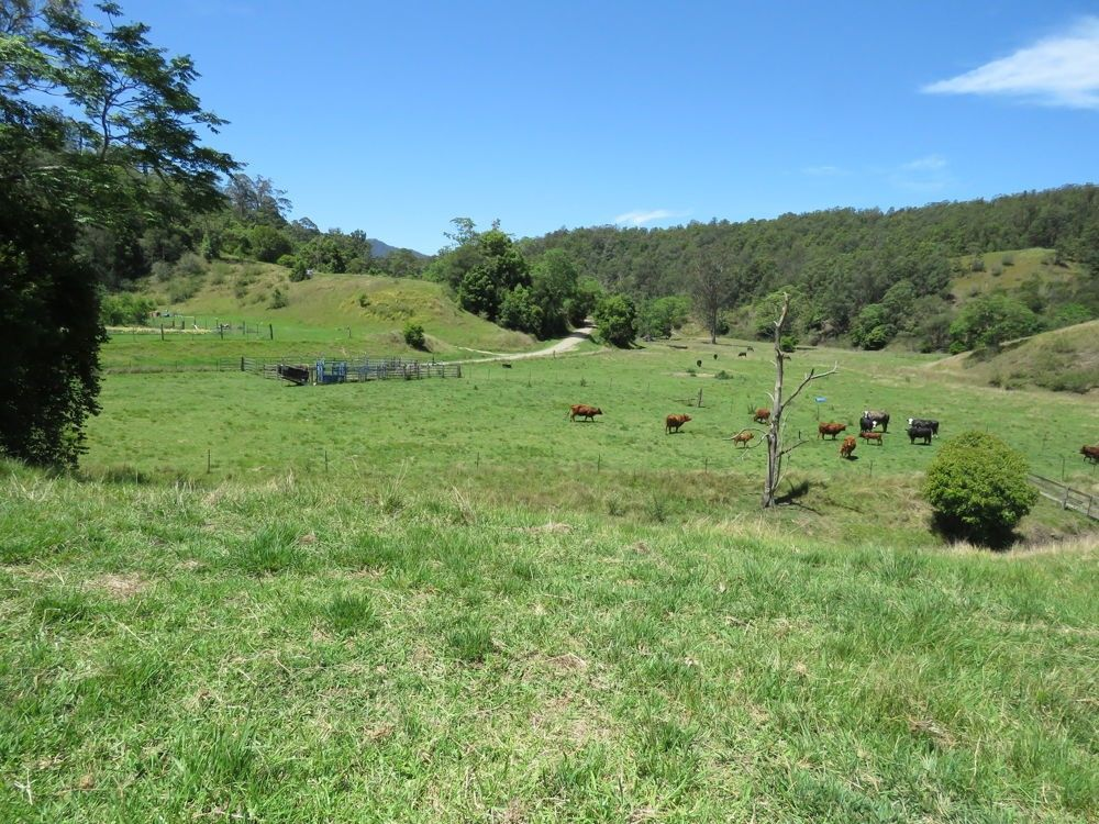 Burrapine NSW 2447, Image 1