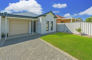 Picture of 9a Buccleuch Avenue, Findon SA 5023